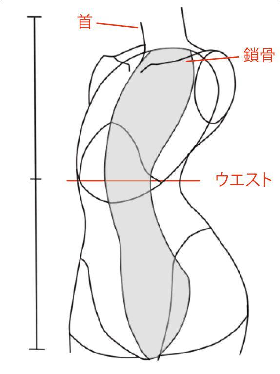 ナナメ向きの胴体の描き方 絵師ノート
