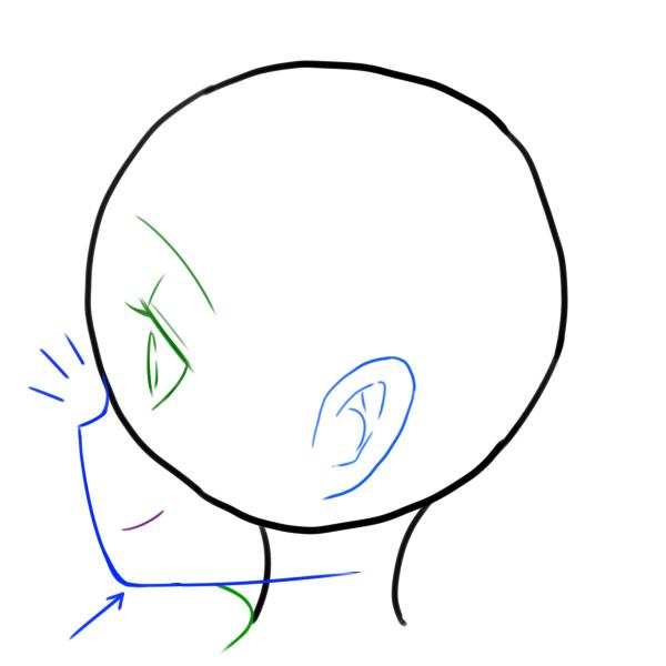 (10)鼻と顎を強調する