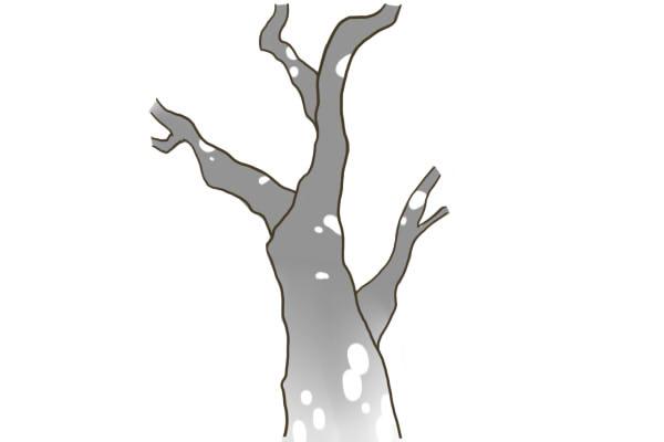 木の幹の描き方 絵師ノート