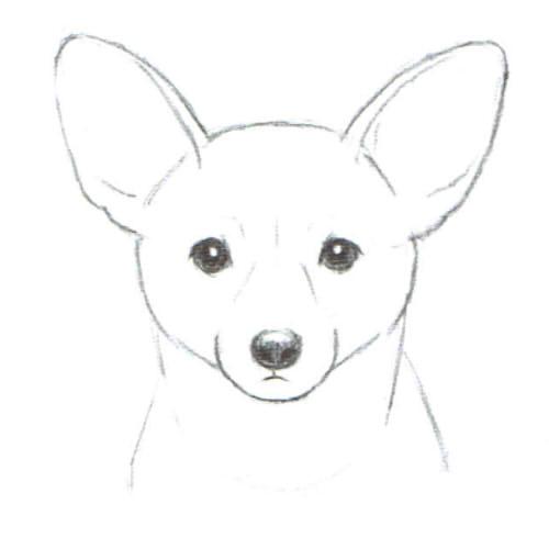 笑顔から怒り顔まで13選犬の表情の描き方 絵師ノート